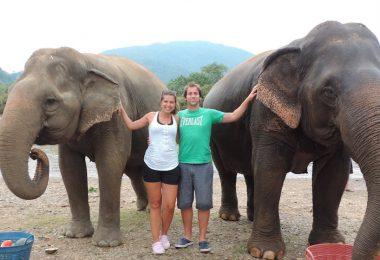 Viviendo con Elefantes en Tailandia
